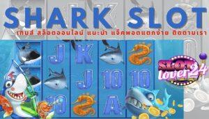สล็อต ฝาก ถอน ออ โต้,shark slot,สล็อตฝากถอนไม่มีขั้นต่ำ